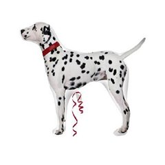 Dalmation Dog Foil Supershape Balloon, 24777