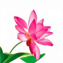 Servetele de masa cu floare roz pentru petrecere - 33 cm, Radar 63044, Set 20 buc