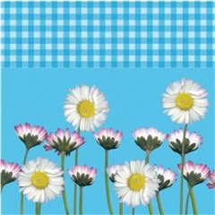Daisy Blue Luncheon Napkins, 33 cm, Amscan 551861, Pack of 20 pieces