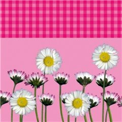 Daisy Pink Luncheon Napkins, 33 cm, Amscan RM551864, Pack of 20 pieces