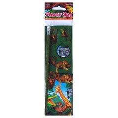 Set de colorat si stickere Safari Party, Amscan 279781, 1 buc