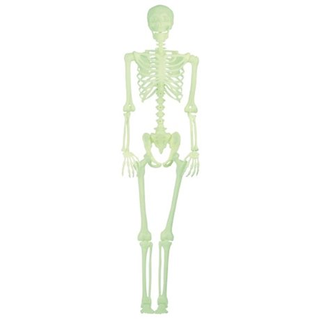 Scheleti din Plastic Halloween, 30 cm, 4 buc, OT12/1328