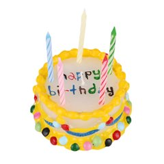 Multi coloured wax birthday cake with 5 candles- 10 X 5cm, Radar OT100804