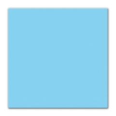 Servetele de masa bleu pentru petrecere - 33 x 33 cm, Radar 62205, set 25 bucati