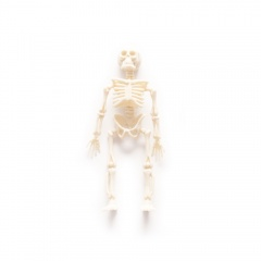 Schelete decorativ Halloween - 11 cm, Radar 52434
